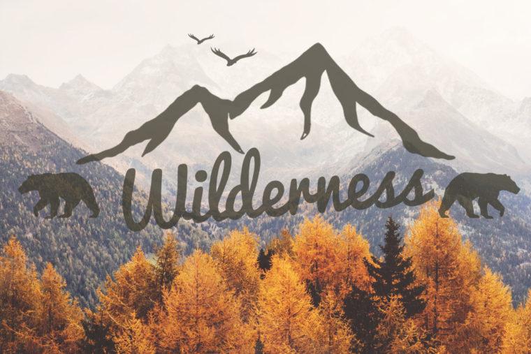 My Wilderness Calling
